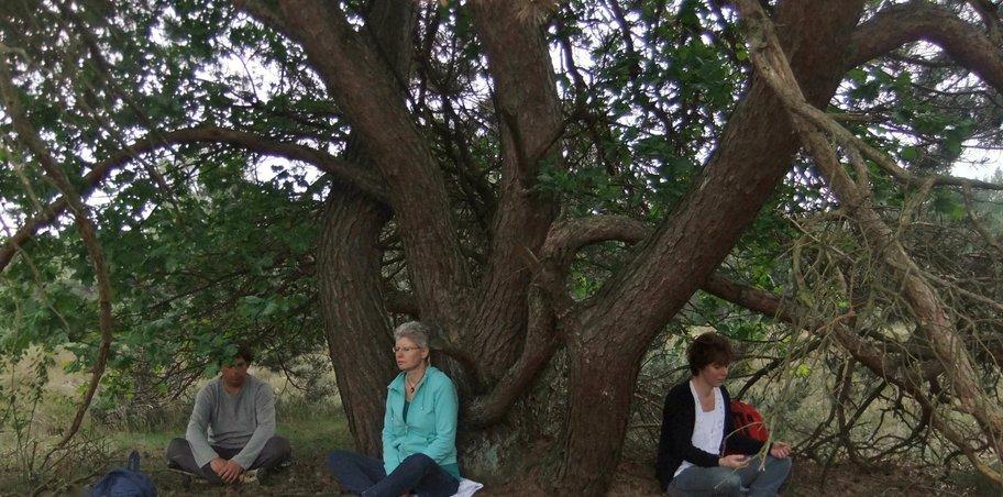 meditatie in de natuur sjamanisme